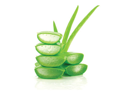 Widi Care - Aloe